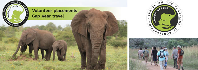 Wildlife Experience in Kruger National Park South Africa - 12+ Projects!
