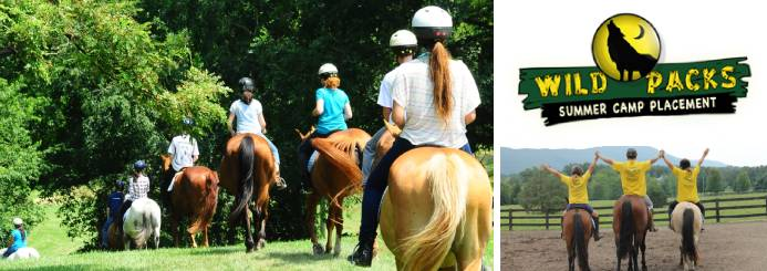 Work an Equestrian Role at a Summer Camp in the USA