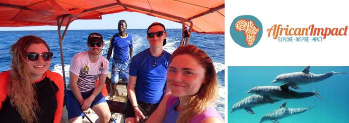 Dolphin Conservation in Zanzibar