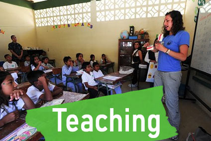 classroom teaching gap year